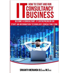 IT Consulting Business